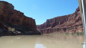 Colorado-River-from-boat-tour
